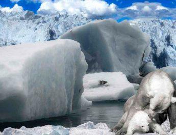 Un tercio del hielo marino puede colapsar con 4 grados más